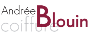 logo mon salon web